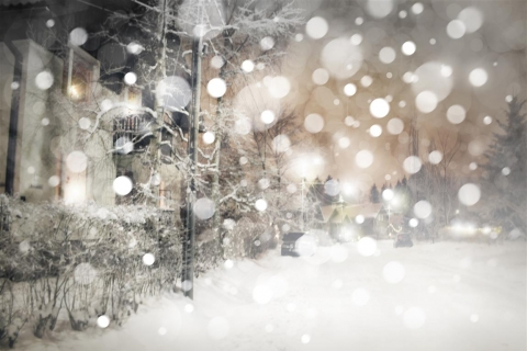 Ensure Your Business Has a Profitable – and Safe! – Winter with Kalamazoo Snow Removal